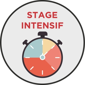 Stage code 3 jours
